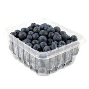 Clear Springs Bren Blueberries