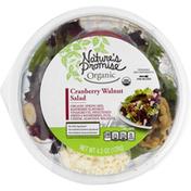 Nature's Promise Salad, Cranberry Walnut