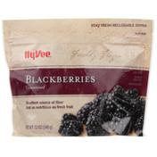 Hy-Vee Freshly Frozen Unsweetened Blackberries