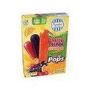 Sundae Shoppe Sugar Free Junior Pops