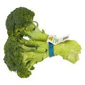 Foxy Organic Broccoli, Bunch
