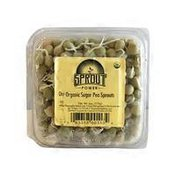 Sungrown Organic Sweet Pea Sprouts