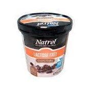 Natrel Lactose Free Creamy Coffee Ice Cream