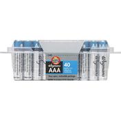 Wegmans AAA Alkaline Batteries, FAMILY PACK