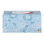 Ahold Strong & Gentle Facial Tissues - 210 CT