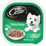 CESAR Turkey Recipe Filets in Gravy Canine Cuisine
