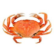 Whole Cooked Fresh Crab