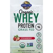 Garden of Life Whey Protein, Organic, Strawberry