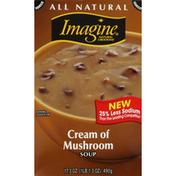 Imagine Soup, Cream of Mushroom