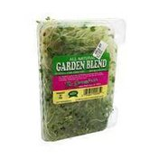 Sproutman Organic Garden Blend Sprouts
