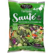 Taylor Farms Teriyaki Sauté Vegetable Stir Fry Kit