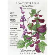 Botanical Interests Seeds, Hyacinth Bean, Ruby Moon