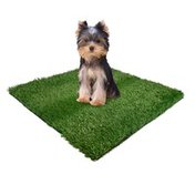 Four Paws Small Wee-wee Patch Indoor Potty Replacement Grass