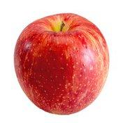 Star of Devon Apple