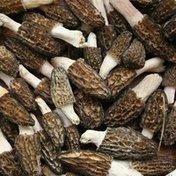Organic Morel Mushroom