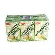 Vita Soy Melon Flavor Milk Drink