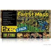 Hagen Exo Terra Forest Moss