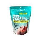 Relief MD Sore Muscle & Back Soak Eucalyptus Scented Epsom Salt