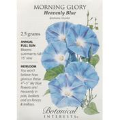 Botanical Interests Seeds, Morning Glory, Heavenly Blue