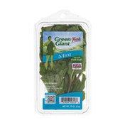 Green Giant Fresh Mint