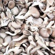 Oyster Mushroom Box