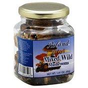 Roland Dried Wild Mixed Mushrooms