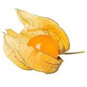 Golden Gooseberry