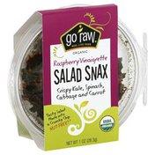 Go Raw Salad Snax, Raspberry Vinaigrette