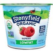 Stonyfield® Organic Raspberry Lowfat Yogurt
