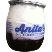 Anita's Yogurt Coconut Blueberry Creamline