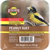 Audubon Park Wild Bird Food, Peanut Suet