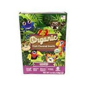 Jelly Belly Organic Assorted Fruit Flavored Snacks