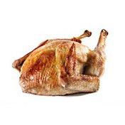 Carolina Pride Roasted Turkey