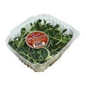 New Natives Organic Sunflower Sprouts Box