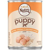 NUTRO Puppy Tender Chicken & Oatmeal Recipe Pate Natural Dog Food