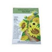 Botanical Interests Organic Elves Blend Dwarf Sunflower Seeds