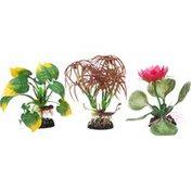 Imaginarium Small Floral Plant