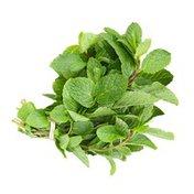 Nature's Promise Organic Mint