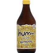 Humm Kombucha, Lemon Ginger