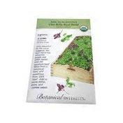 Botanical Interests Organic Ciao Bella Basil Blend Microgreens Seeds