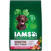 IAMS ProActive Health Sensitive Skin & Stomach with Real Salmon & Lentils Adult Super Premium Dog Food