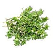 Infinite Herbs Organic Savory