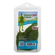 Green Giant Fresh Bay Leaves