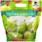 Cmi Pears, D'Anjou