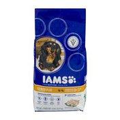 IAMS Proactive Health Dog Food Senior Plus