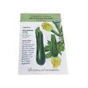 Botanical Interests Organic Black Beauty Summer Squash Seeds