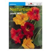 Burpee Nasturtium Seeds
