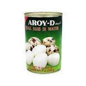 Aroy-D Quail Egg