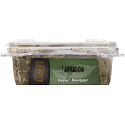 Dion Tarragon, Organic