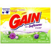 Gain with FreshLock plus a Touch of Softness Simply Fresh Powder Detergent
